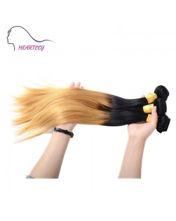 peruvian-ombre-straight-hair-extensions-c